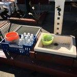 ポケット - ドッグランのお水サービス