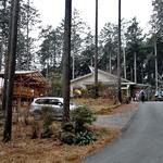 木もれびの里 箏路 - 杉木立に囲まれています