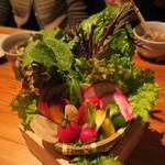 79179498 - 生野菜15種盛り 味噌と塩で2