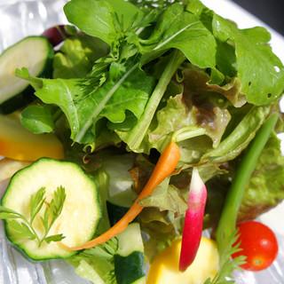 無農薬有機野菜を贅沢に使用した、フレッシュなイタリア料理