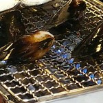 貝焼酒場 カイフォルニア - ホンビノス貝とムール貝