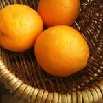 Ocean table - オレンジ