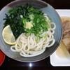 おいでんや麺屋 - 料理写真:かけうどん&牛すじ