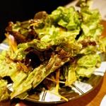 三軒茶屋 焼肉さかもと - SAKAMOTOサラダ