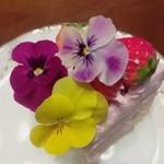 79462186 - お花いっぱい♡