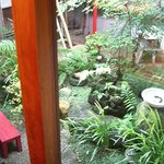ナイヤビンギ - 内観写真:中庭でホッと癒されてください。