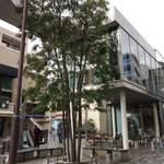 猿田彦珈琲 - ガラス張りの建物丸ごと店舗です