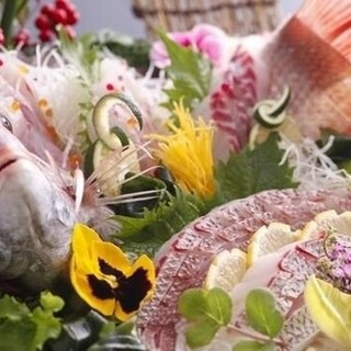 【新鮮活魚】豪華お造り盛合せ&旬の海鮮料理がうまい!