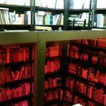 オン・サンデイズ - 壁一面の本棚