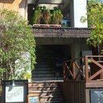グローブカフェ - 階段と、隣の公園の桜の木です☆