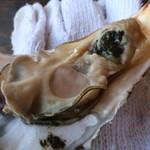 かき小屋 - 牡蠣は全体的に大きめ