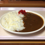 亜熱帯 - 料理写真:カレー180