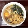 みのがさ - 料理写真:ごぼう天そば(420円)&玉子(50円)