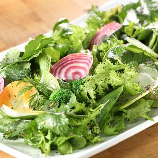 世田谷有機野菜