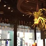 ラモ フルータス カフェ - 窓際は眺めが良さそう?