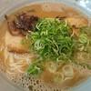 博多とんこつ 真咲雄 - 料理写真:のうとん♪