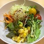 魚沼スイーツガーデン ナトゥーラ - サラダ1皿目