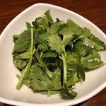 タイ料理 アジアンダイニング ワルンプアン サタニー - 追加パクチー +324円