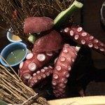 Gyoshoutakaaki - 丸かぶり蛸壺