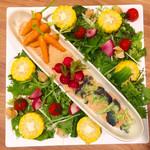 プラチナフィッシュ ガーデンキッチン -