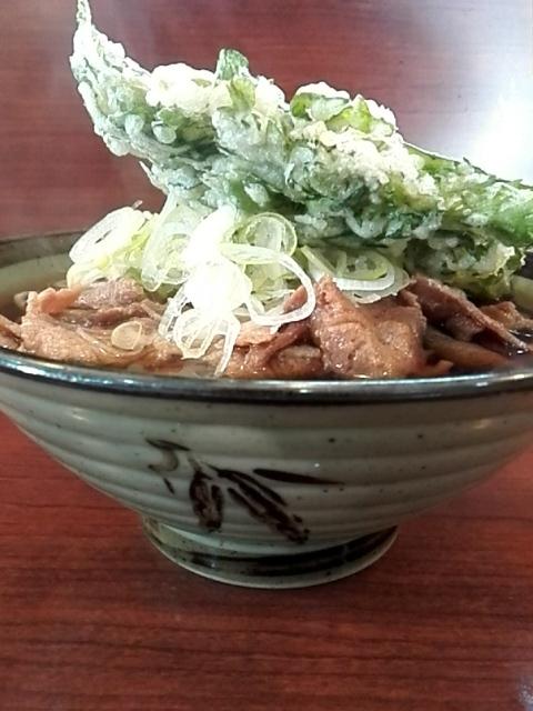 そば処 ながみ - 肉そば¥470+春菊天¥110