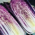 スノー グース - 西貝ファームさんの練馬野菜!