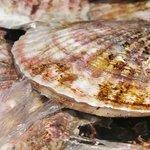三陸直送 プリプリ牡蠣と新鮮魚介 いわて三陸漁場直送酒場 八○ - 今にも泳ぎだしそうな鮮度のホタテが楽しめます!