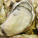三陸直送 プリプリ牡蠣と新鮮魚介 いわて三陸漁場直送酒場 八○ - 三陸直送の剥きたてプリプリの牡蠣