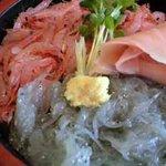 804959 - 生シラスと生桜海老のコンビ丼