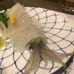 活魚料理 いか清 - 活ヤリいか