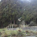 徳山鮓 - 看板がみえました~