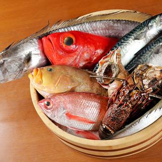 漁船⇒テーブルへ!極鮮の魚料理自慢の仕入れルート