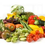 4皿の有機野菜づくしコース