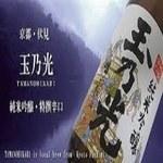 玉の光 300ml(瓶)