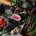 肉ビストロ 2986 - 農家さんから直送される有機野菜