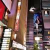 ハヌリ 新宿歌舞伎町ゴジラ通り