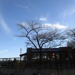 タリーズコーヒー - 隅田川沿いにございます