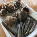 魚稚 - ニシ貝  マテ貝