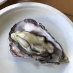 魚稚 - 最高に美味しい相生牡蠣⭐️