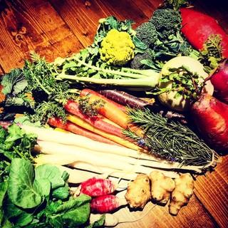 【現地調達の鎌倉野菜】スタッフ自ら目利きの野菜