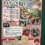 JA南彩 菖蒲グリーンセンター - イチゴ狩りやってます