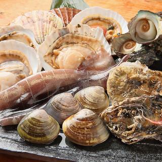 全国の旬な新鮮魚介をいろいろ揃えています!