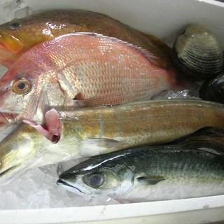 魚介類は日本列島から旬で粋な食材を。