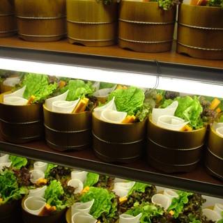 焼肉屋さんなのに、野菜がたっぷり~。