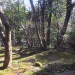 自家焙煎珈琲 森の響 -