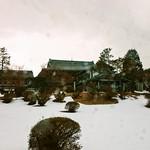 龍宮殿本館 - 帰宅時はほぼ吹雪(><)