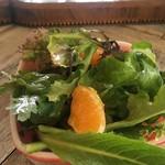 81129097 - サラダは、オレンジがアクセント!オリーブオイルたっぷり!酸っぱいドレシング!
