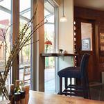 カフェ マメヒコ - 窓の外には街路樹の緑が♪