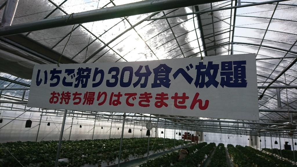 いちごの森 name=