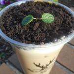 ジ アレイ - 盆栽タピオカミルクティー